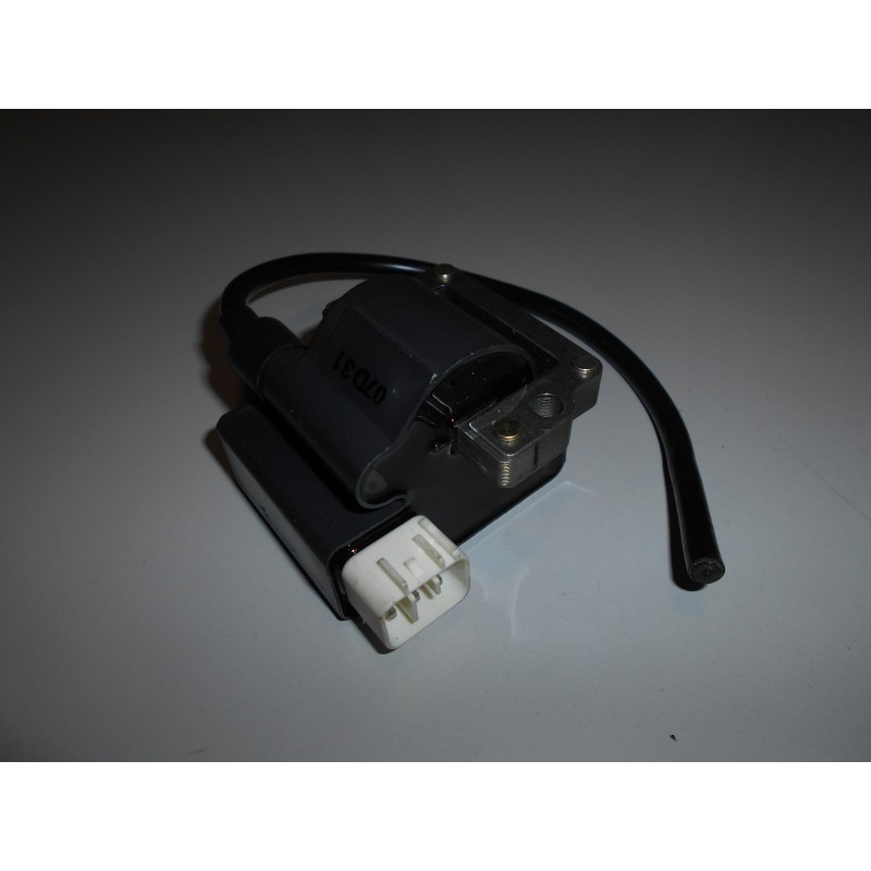 IGNITION COIL ( FOR 125 MAX DD2 WITHOUT REVERSE )