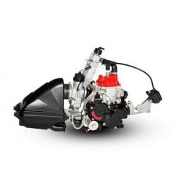 MOTOR ROTAX MICRO EVO 2021...