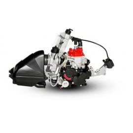 MOTOR ROTAX JUNIOR EVO 2021...