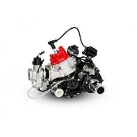 MOTOR ROTAX DD2 EVO 2021...