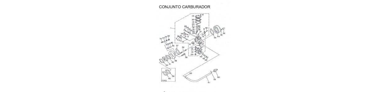 CONJUNTO CARBURADOR WALBRO